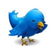 _Twitter 2
